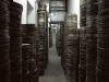 The Archive by Vesna Pavlovic