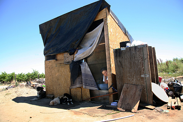 Immigrant Farm Worker Living in a Plywood Shack